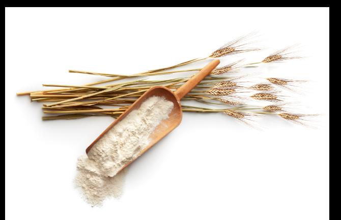 Immagine farina di grano